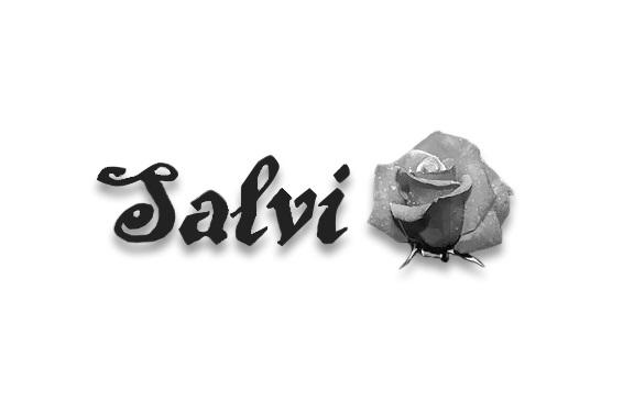 CRM для Фабрики женской одежды САЛВИ