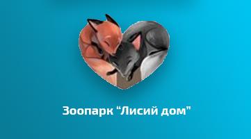 Работы по настройке портала ООО «ЛисийДом»