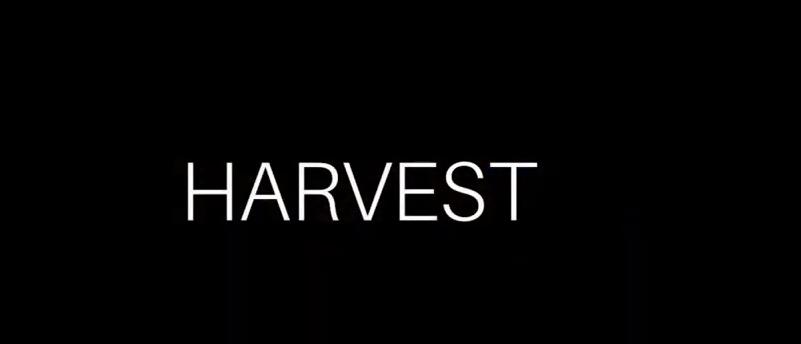 Harvest - український виробник надійних сумок та рюкзаків